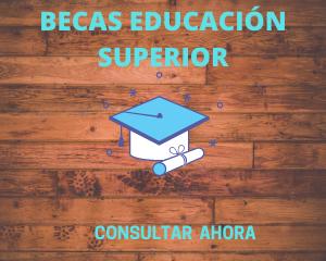 BECAS EDUCACIÓN SUPERIOR