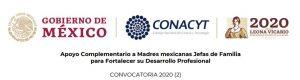 Apoyo a madres mexicanas 2020 (2)