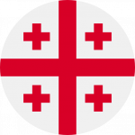 becas georgia